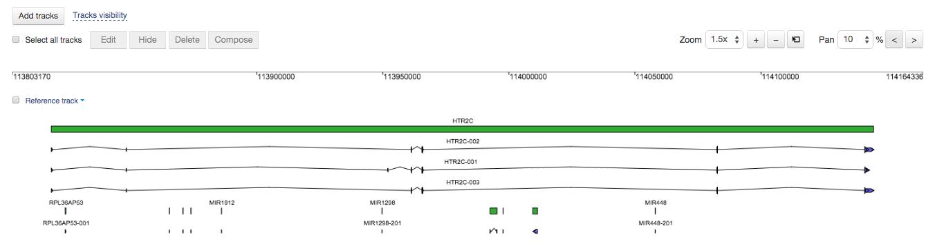 HTR2C_gene