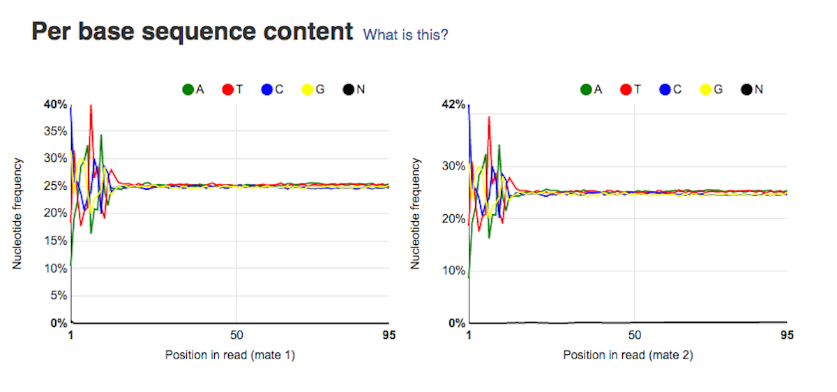 per base sequence content