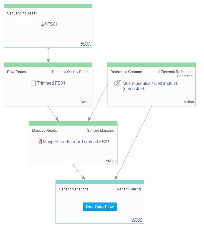 run data flow