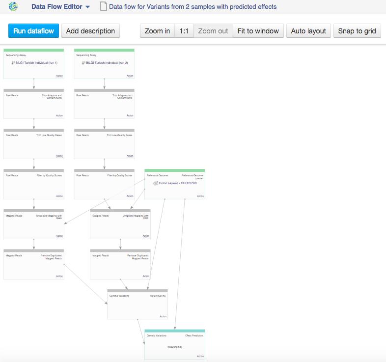 Data Flow Editor